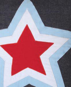 single-star-cuhsion-close-up